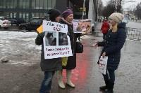 Более 8000 туляков требуют запретить убийство бездомных животных, Фото: 3