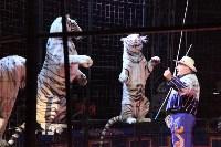 """Цирк """"Максимус"""" и тигрица в гостях у Myslo, Фото: 32"""