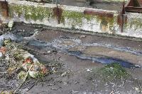 С заброшенных очистных канализация много лет сливается под заборы домов, Фото: 12