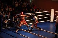 В Туле прошла матчевая встреча звезд кикбоксинга, Фото: 24