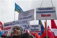 В Туле проходит митинг в поддержку Крыма, Фото: 17