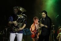Эмир Кустурица и The No Smoking Orchestra в Туле. 14 декабря, Фото: 20