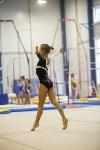 Спортивная гимнастика в Туле 3.12, Фото: 77