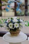 Ассортимент тульских цветочных магазинов. 28.02.2015, Фото: 42