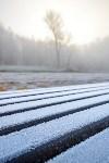 Ледяное утро в Центральном парке, Фото: 15