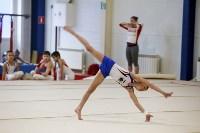 Спортивная гимнастика в Туле 3.12, Фото: 22