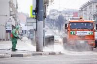 В Туле продолжается масштабная дезинфекция улиц, Фото: 13