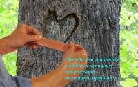 Романенко Елена 21 год «Любовь к природе», Фото: 11
