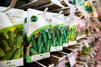 Какие семена выбрать и как правильно ухаживать за рассадой, Фото: 36