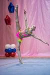 Соревнования по художественной гимнастике 31 марта-1 апреля 2016 года, Фото: 125