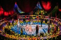 Шоу Lovero в тульском цирке, Фото: 24
