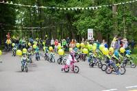 В Туле прошел большой велопарад, Фото: 58