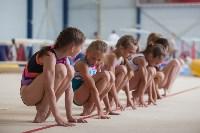 Тульские гимнастки готовятся к первенству России, Фото: 23