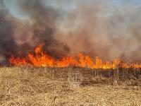 В Федоровке огонь с горящего поля едва не перекинулся на дома, Фото: 18