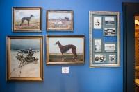 Тульский областной краеведческий музей, Фото: 73