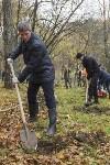 Высадка деревьев в Рогожинском парке, Фото: 19