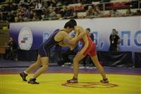 Представительный турнир по греко-римской борьбе. 16 ноября 2013, Фото: 8