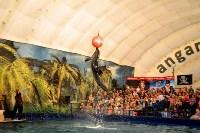 Шоу карибских дельфинов, Фото: 6