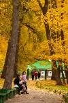 Золотая осень в Туле-2019, Фото: 98