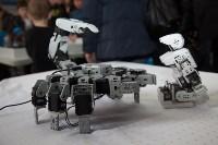 Открытие шоу роботов в Туле: искусственный интеллект и робо-дискотека, Фото: 28
