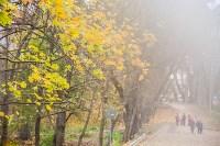 Платоновский парк, Фото: 14