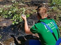 В Пролетарском районе Тулы ликвидируют разлив мазута, Фото: 20