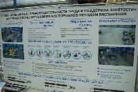 Визит министра Максима Топилина, Фото: 4