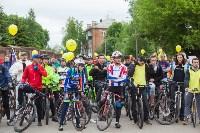 В Туле прошел большой велопарад, Фото: 170