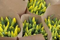 Тюльпаны , Фото: 33