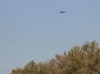 Тульские полигоны ТБО с высоты птичьего полета, Фото: 2