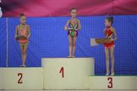 IX Всероссийский турнир по художественной гимнастике «Старая Тула», Фото: 17