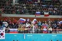 Керлинг на Олимпиаде в Сочи, Фото: 6