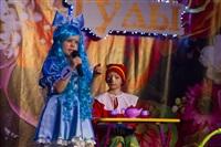 Принцесса Тулы - 2014, Фото: 10