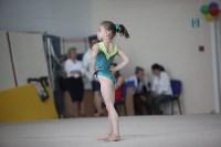 Соревнования по спортивной гимнастике на призы Заслуженных мастеров спорта , Фото: 64
