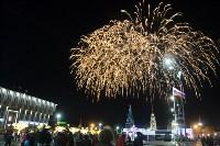 В Туле завершились новогодние гуляния, Фото: 45