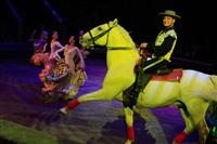 Цирк «Вива, Зорро!» в Туле , Фото: 62