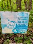 Кладбище домашних животных в Туле, Фото: 9