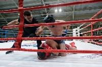 В Туле открылись чемпионат и первенство ЦФО по смешанному боевому единоборству, Фото: 16