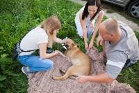Спасение рядового пса, Фото: 6