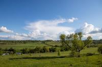 Тишина, солнце и бесконечный простор: 90 красивых фото с родины слонов – Одоевского района, Фото: 30