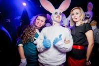 Хэллоуин-2014 в Премьере, Фото: 46