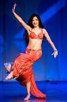 В Туле показали шоу восточных танцев, Фото: 95