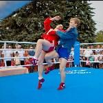 Турнир по боксу в Алексине, Фото: 25