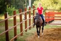 Новые лошади для конной полиции в Центральном парке, Фото: 6