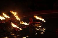 В Тульском цирке прошла премьера аква-шоу, Фото: 69