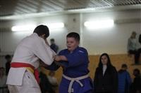 В Туле прошел юношеский турнир по дзюдо, Фото: 27