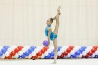 Художественная гимнастика. «Осенний вальс-2015»., Фото: 123