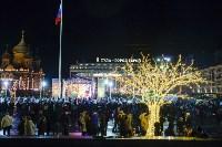 В Туле завершились новогодние гуляния, Фото: 49