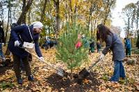 В Центральном парке Тулы появился сосновый бор «Слободы», Фото: 9