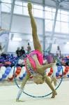 Художественная гимнастика. «Осенний вальс-2015»., Фото: 16